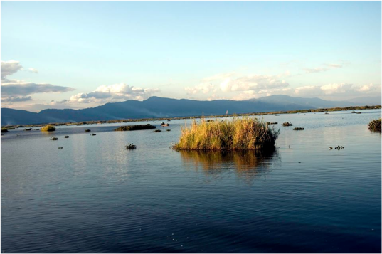 FLOATING LABORATORY LAUNCHED TO MONITOR LOKTAK LAKE